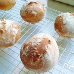 Panecillos redondos – La Cocinera